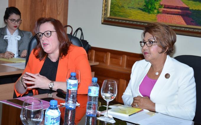 Comisión de Género del Senado escucha posición de ministra de la Mujer sobre proyecto de ley